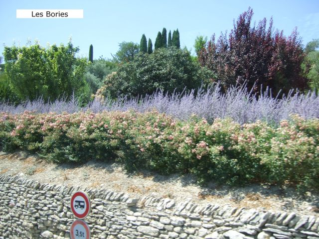Provence12-441