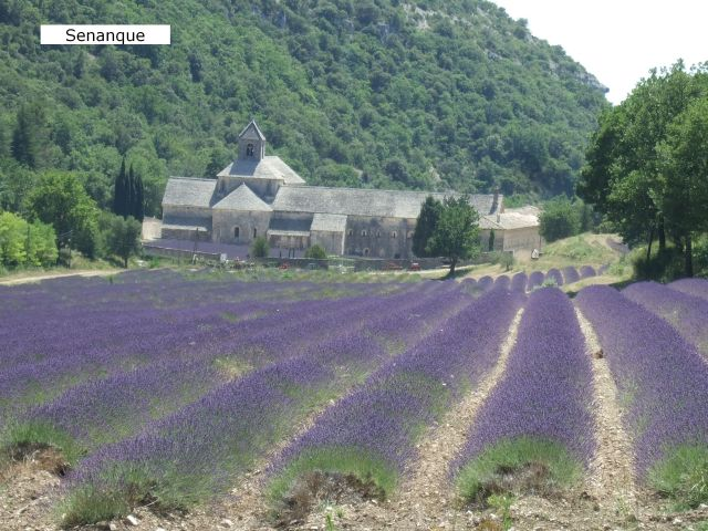 Provence12-453